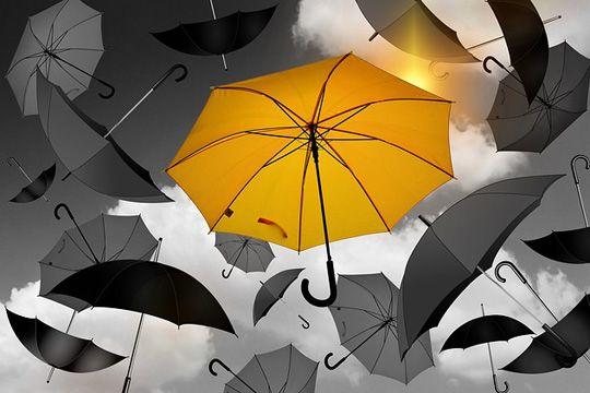 Arbeitgeber-Kommunikation EVP Regenschirme