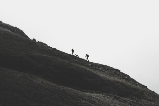 Aufstieg Berge Wanderung Hund