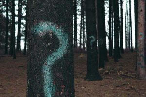 Kennzeichnungspflicht Influencer Beiträge Fragezeichen Bäume Wald