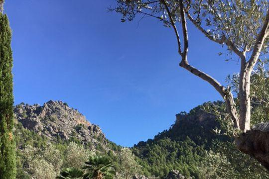 Mallorca Blauer Himmel Tramuntana
