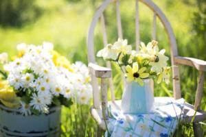 Faulpelztag Garten Blumen Stuhl Sonne Sommer