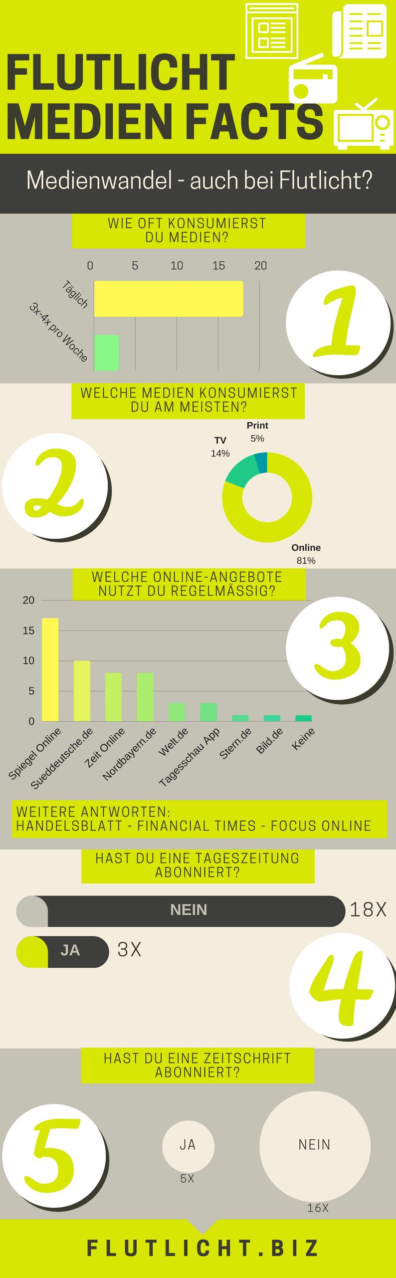 Flutlicht Infografik Mediennutzung Fakten