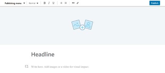 LinkedIn Pulse Artikel, Screenshot, Artikel eingeben